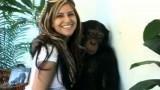 amazing_monkey_hook